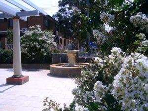 front courtyard gardens