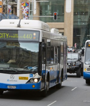 Sydney Public Transport Buses